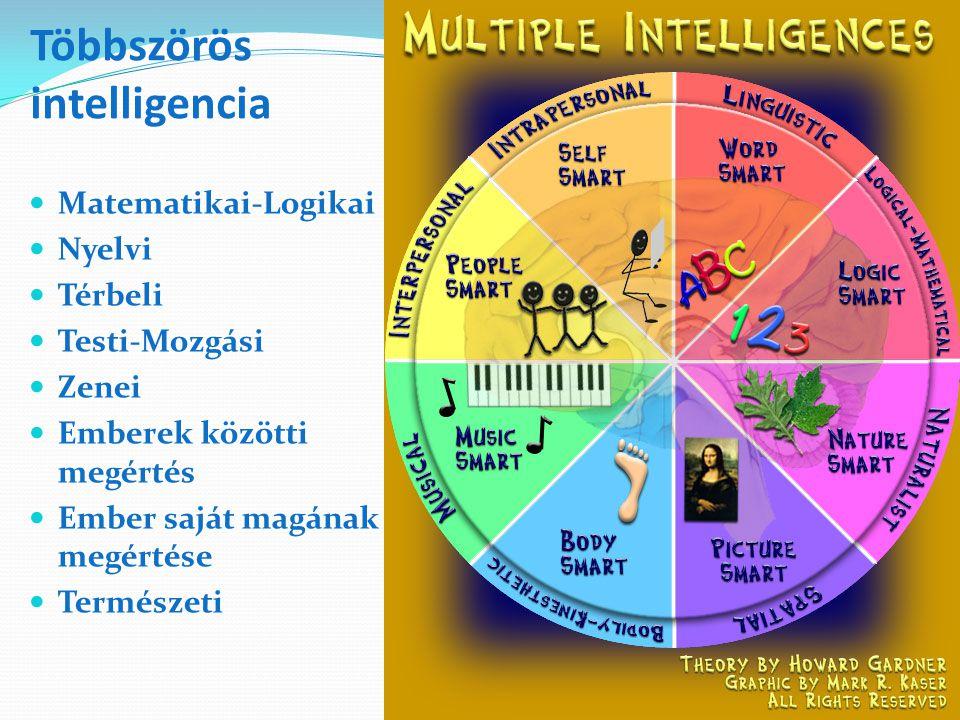Többszörös intelligencia