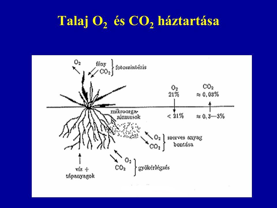 Talaj O2 és CO2 háztartása