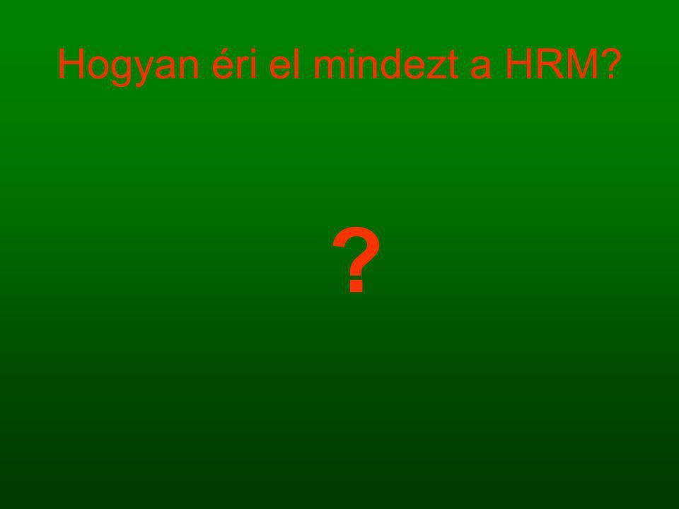 Hogyan éri el mindezt a HRM