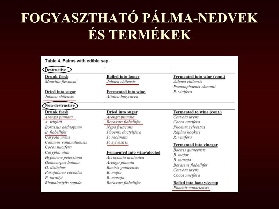 FOGYASZTHATÓ PÁLMA-NEDVEK ÉS TERMÉKEK