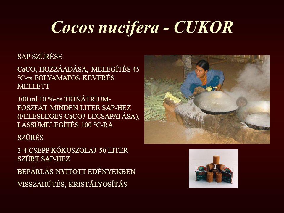 Cocos nucifera - CUKOR SAP SZŰRÉSE