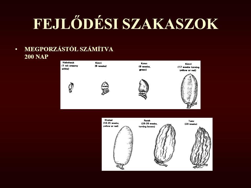 FEJLŐDÉSI SZAKASZOK MEGPORZÁSTÓL SZÁMÍTVA 200 NAP