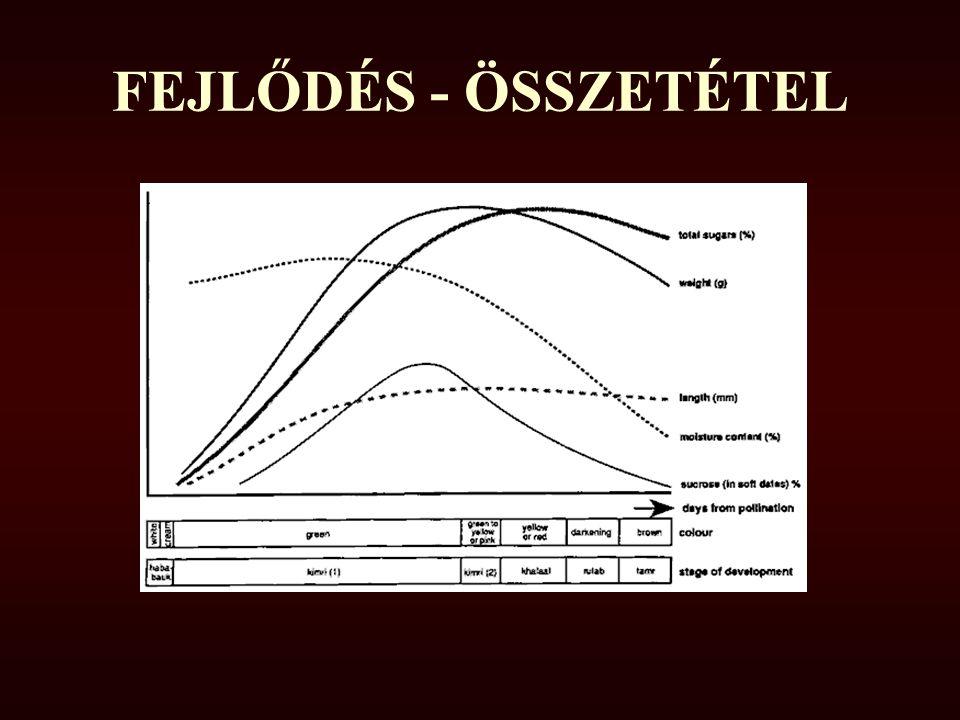 FEJLŐDÉS - ÖSSZETÉTEL