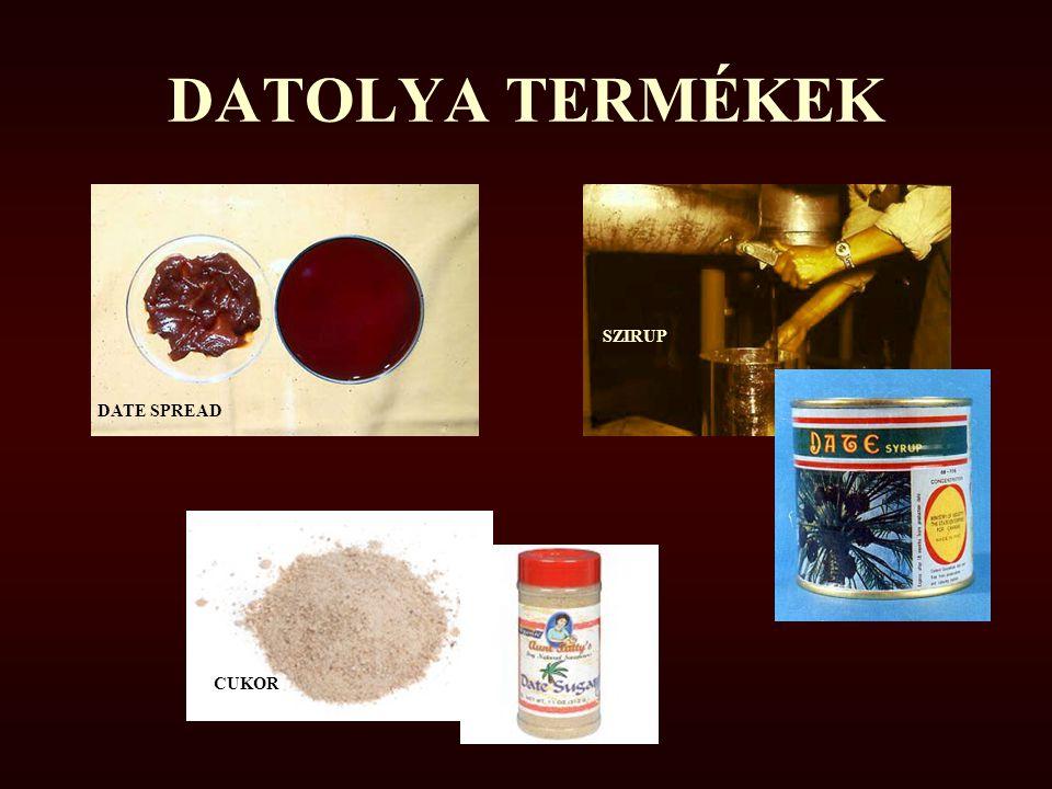 DATOLYA TERMÉKEK SZIRUP DATE SPREAD CUKOR