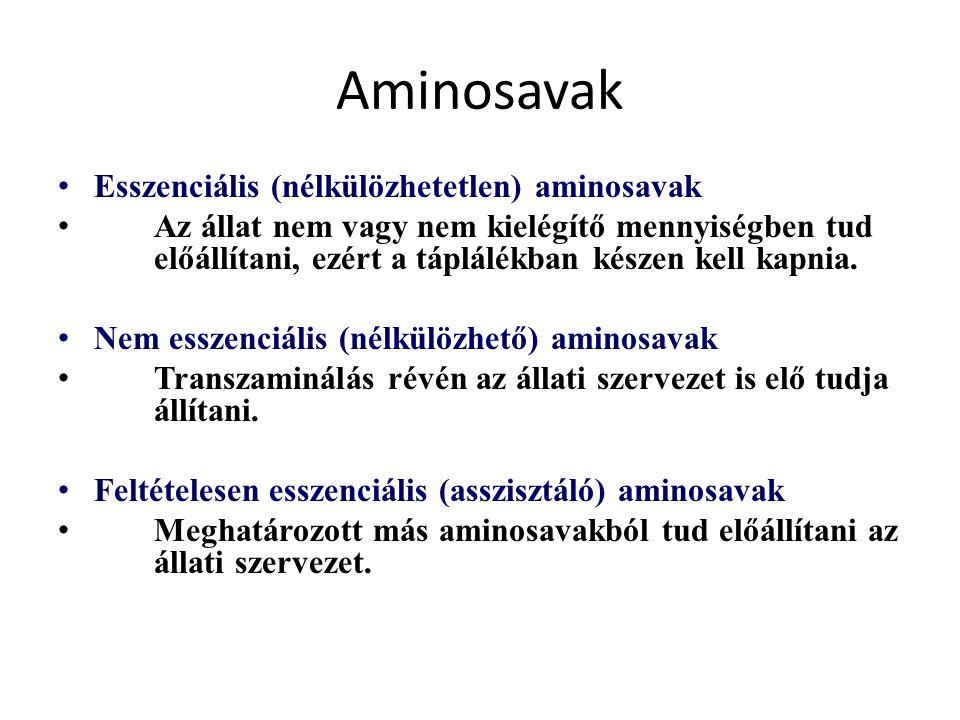 Aminosavak Esszenciális (nélkülözhetetlen) aminosavak