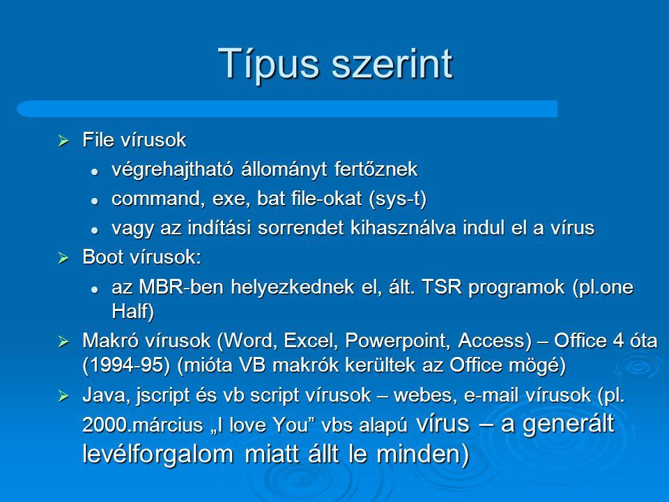Típus szerint File vírusok végrehajtható állományt fertőznek