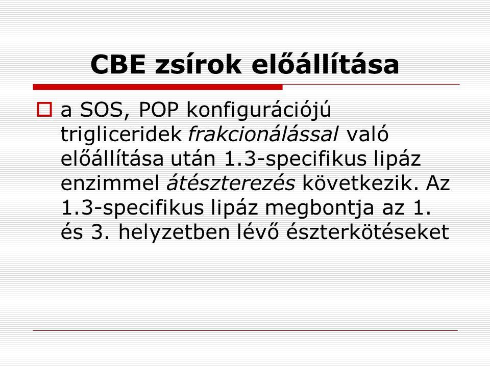 CBE zsírok előállítása