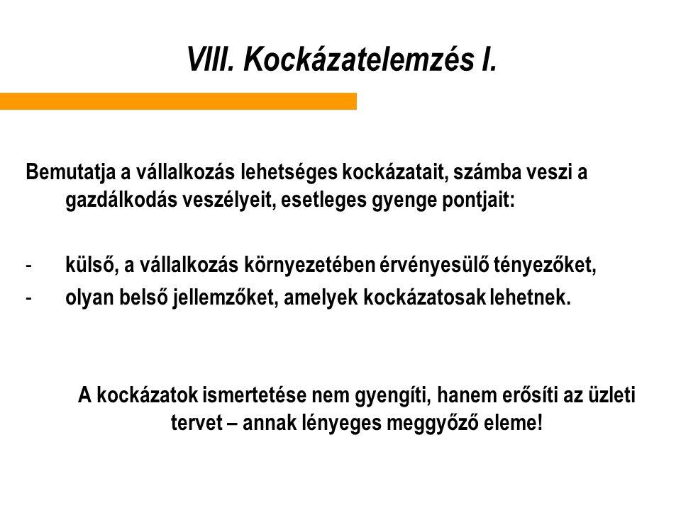 VIII. Kockázatelemzés I.