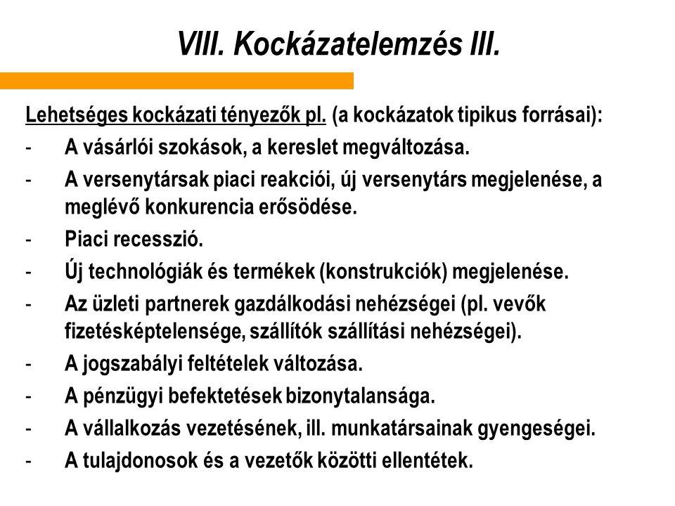 VIII. Kockázatelemzés III.