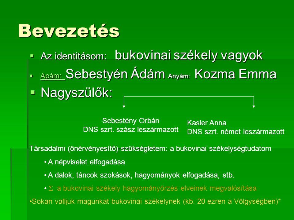 Sebestény Orbán DNS szrt. szász leszármazott