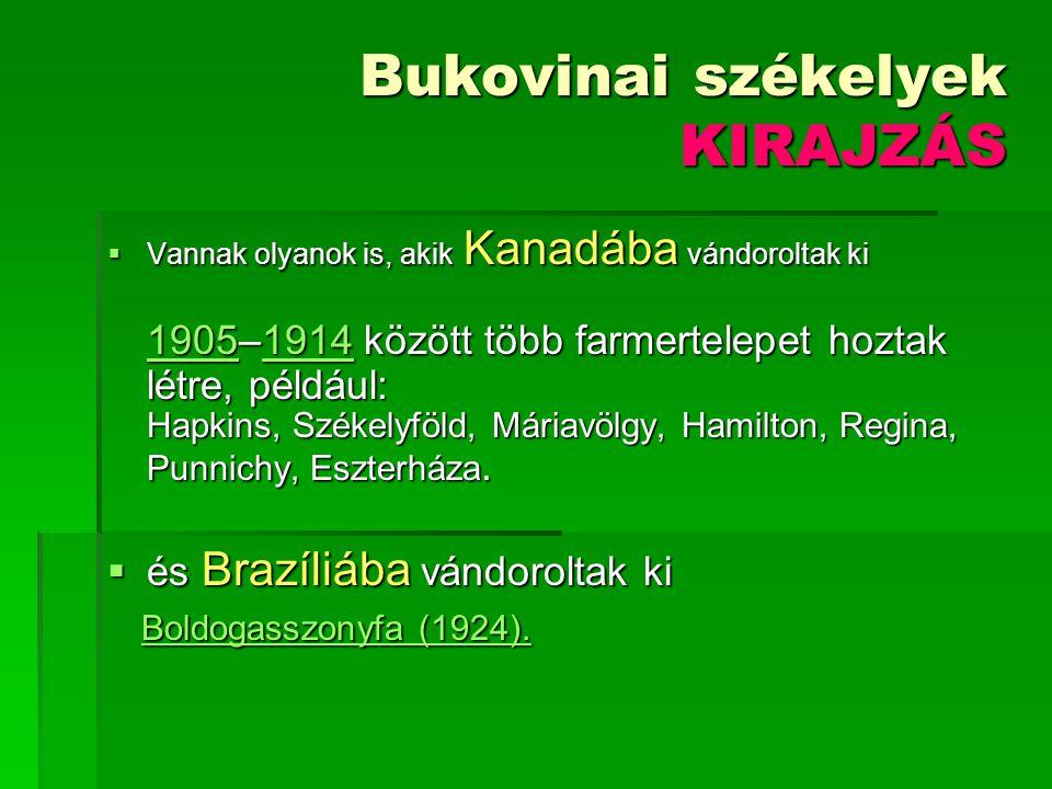 Bukovinai székelyek KIRAJZÁS