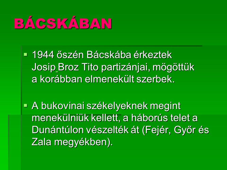 BÁCSKÁBAN 1944 őszén Bácskába érkeztek Josip Broz Tito partizánjai, mögöttük a korábban elmenekült szerbek.