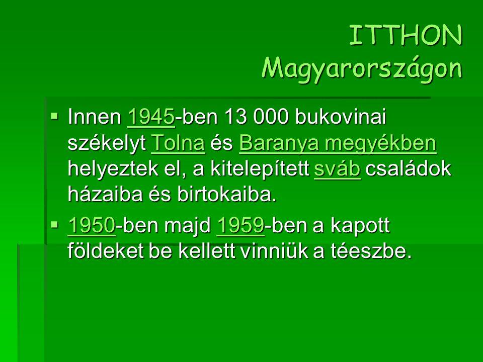 ITTHON Magyarországon