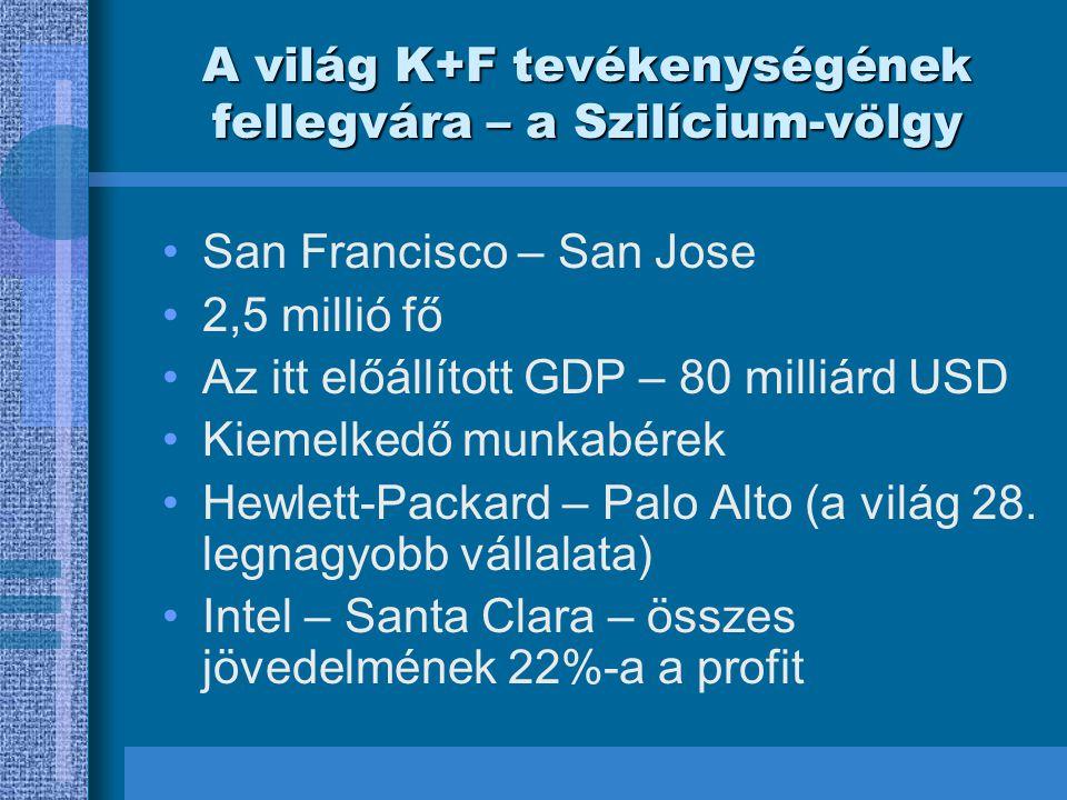 A világ K+F tevékenységének fellegvára – a Szilícium-völgy