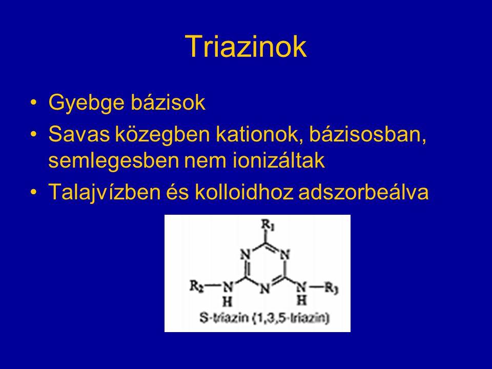 Triazinok Gyebge bázisok