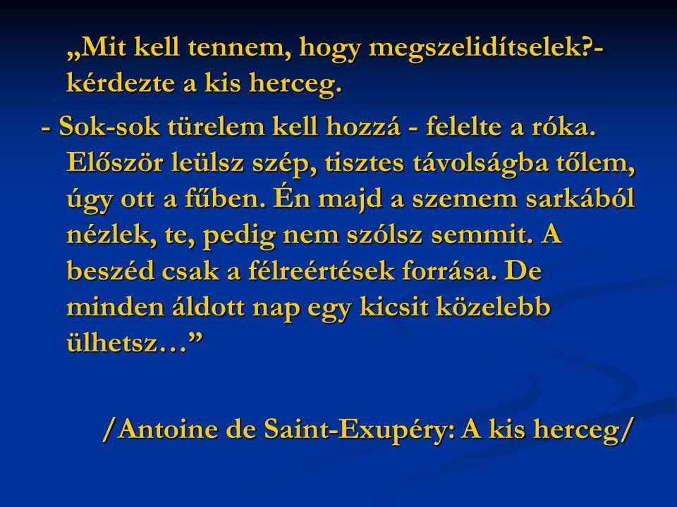 /Antoine de Saint-Exupéry: A kis herceg/