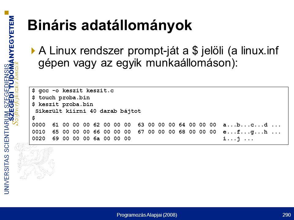 Bináris adatállományok