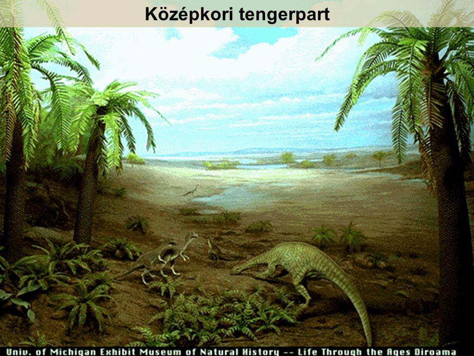 Középkori tengerpart