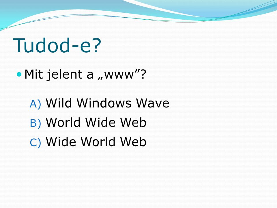 "Tudod-e Mit jelent a ""www Wild Windows Wave World Wide Web"