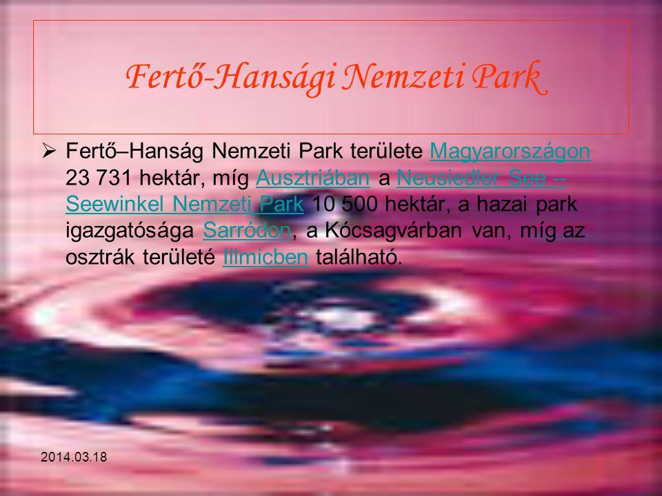 Fertő-Hansági Nemzeti Park