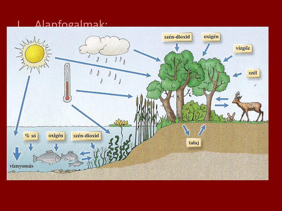Alapfogalmak: 1.) Környezeti tényezők: a.) élettelen: pl: vízi élettérben: