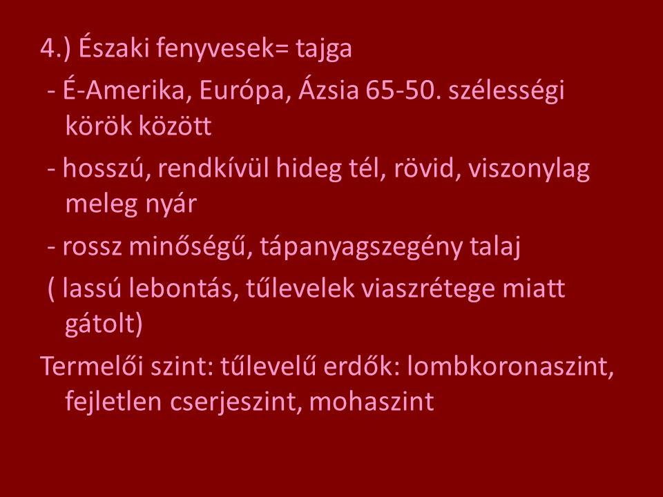 4. ) Északi fenyvesek= tajga - É-Amerika, Európa, Ázsia 65-50