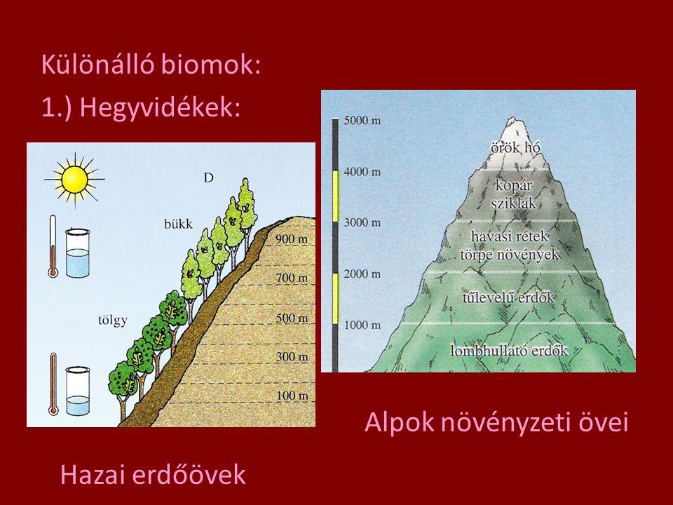 Különálló biomok: 1.) Hegyvidékek: