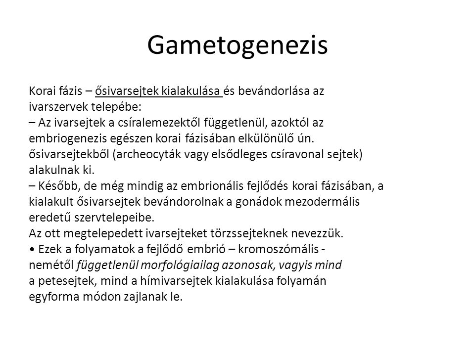 Gametogenezis