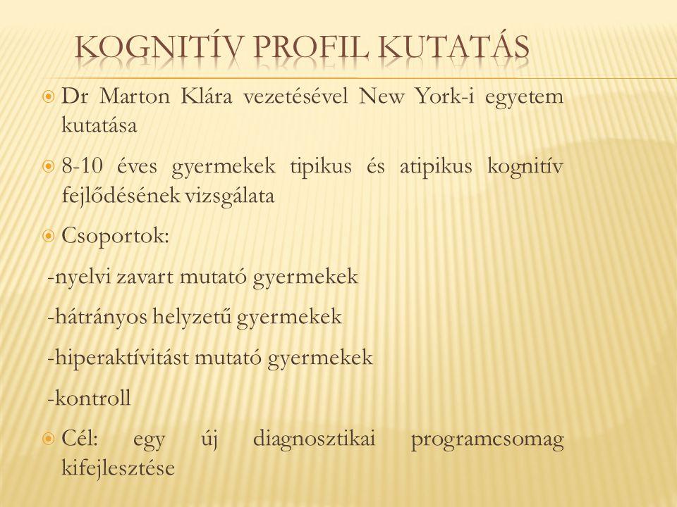 Kognitív profil kutatás