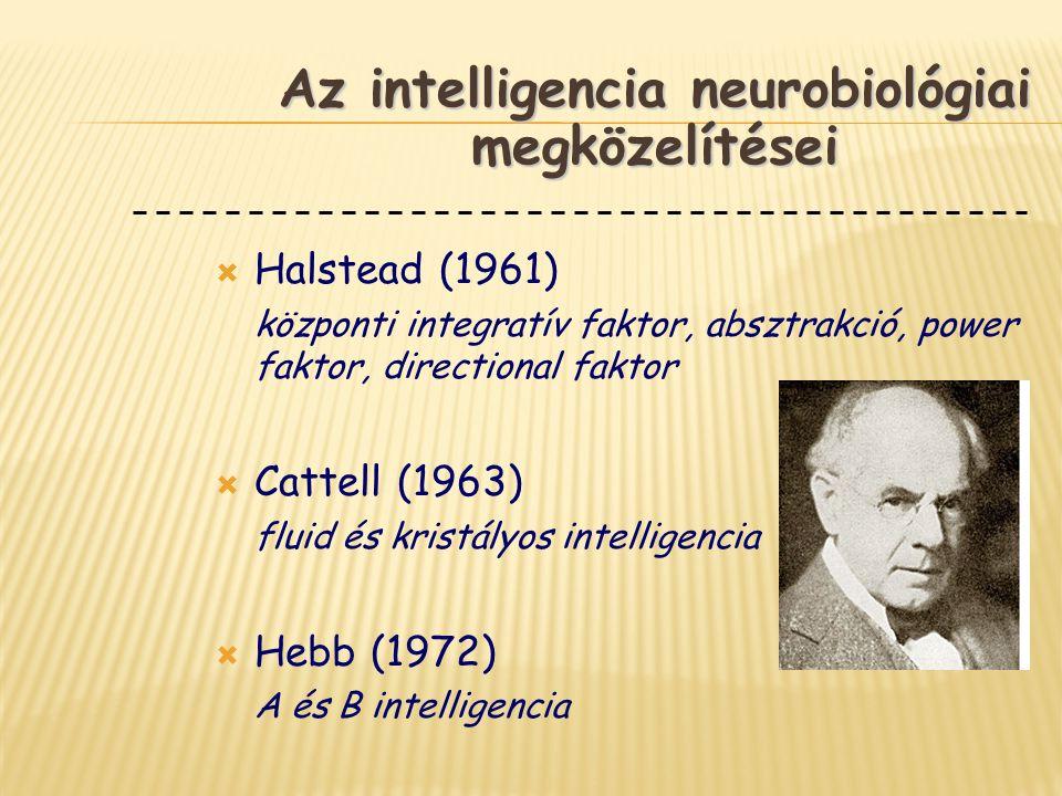 Az intelligencia neurobiológiai megközelítései