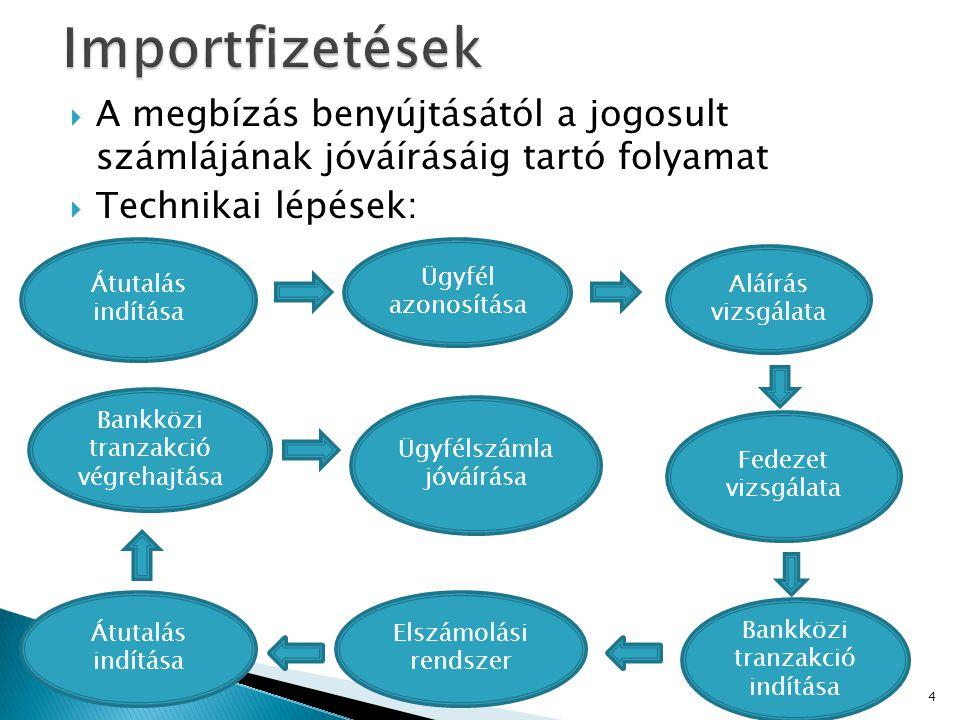 Importfizetések A megbízás benyújtásától a jogosult számlájának jóváírásáig tartó folyamat. Technikai lépések: