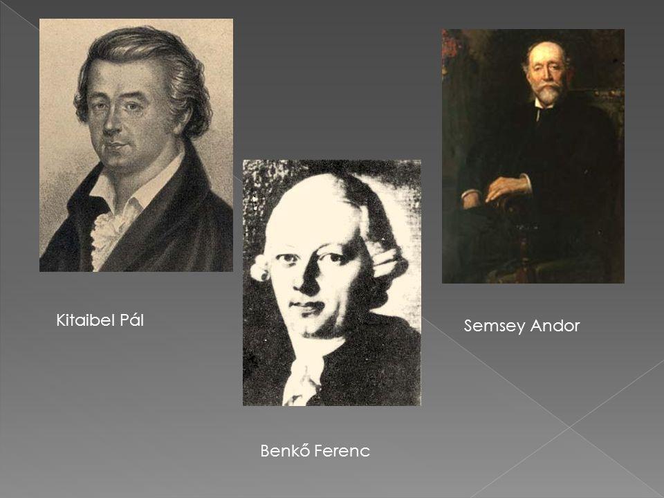 Kitaibel Pál Semsey Andor Benkő Ferenc