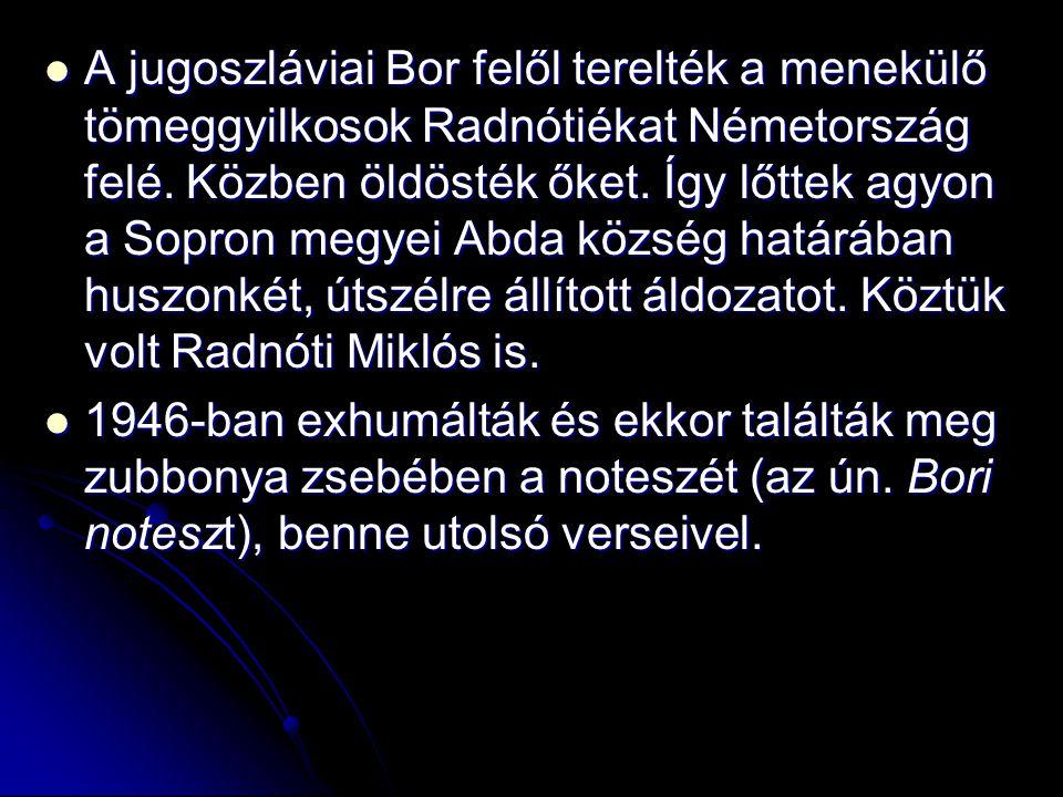A jugoszláviai Bor felől terelték a menekülő tömeggyilkosok Radnótiékat Németország felé. Közben öldösték őket. Így lőttek agyon a Sopron megyei Abda község határában huszonkét, útszélre állított áldozatot. Köztük volt Radnóti Miklós is.