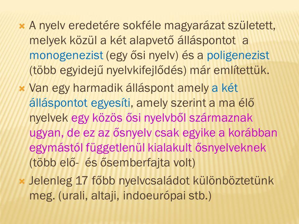 A nyelv eredetére sokféle magyarázat született, melyek közül a két alapvető álláspontot a monogenezist (egy ősi nyelv) és a poligenezist (több egyidejű nyelvkifejlődés) már említettük.