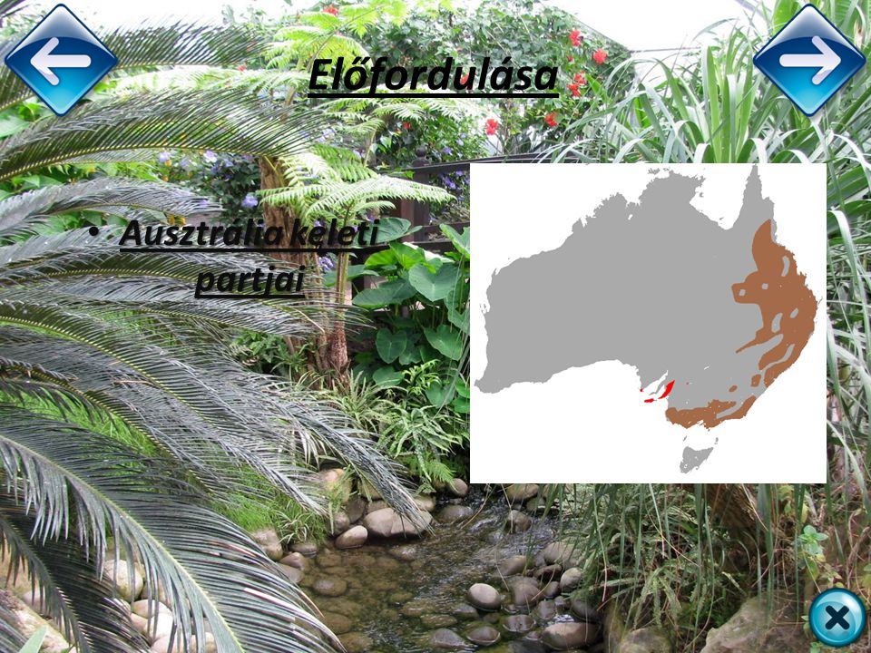 Ausztrália keleti partjai