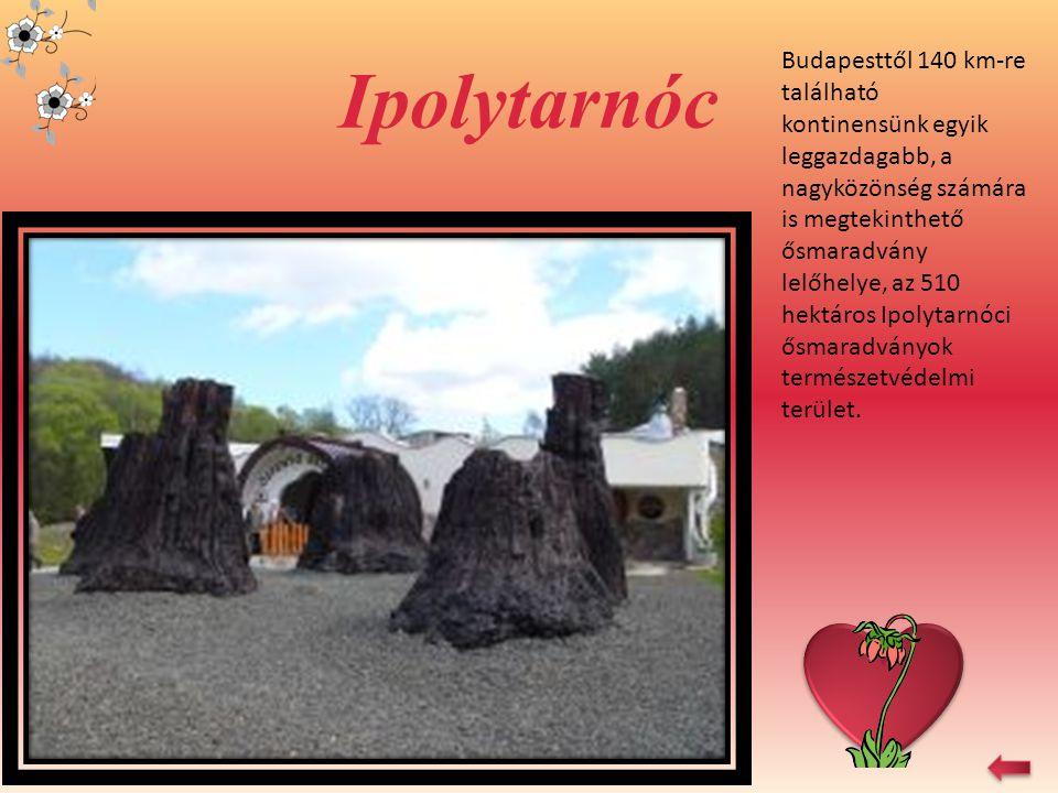 Ipolytarnóc