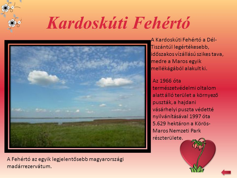 Kardoskúti Fehértó A Kardoskúti Fehértó a Dél-Tiszántúl legértékesebb, időszakos vízállású szikes tava, medre a Maros egyik mellékágából alakult ki.