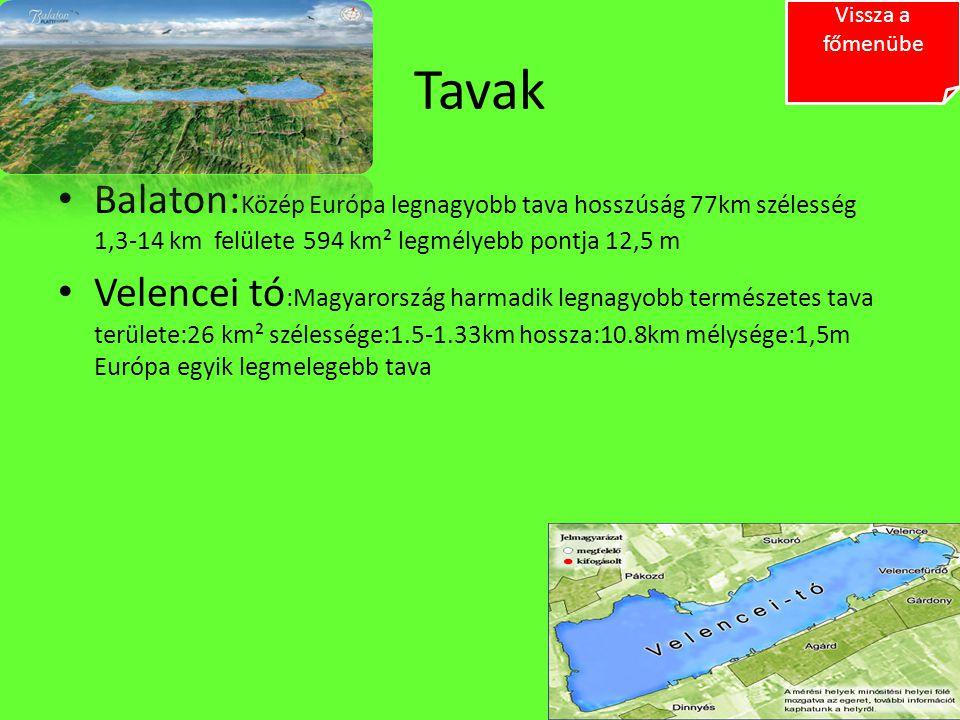 Vissza a főmenübe Tavak. Balaton:Közép Európa legnagyobb tava hosszúság 77km szélesség 1,3-14 km felülete 594 km² legmélyebb pontja 12,5 m.