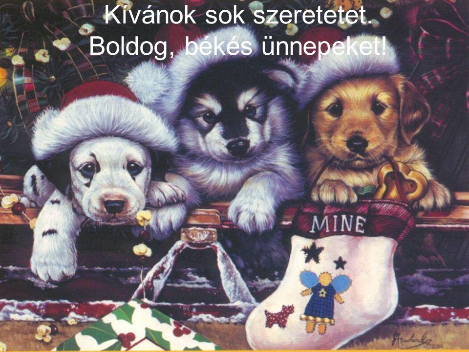 Kívánok sok szeretetet. Boldog, békés ünnepeket!