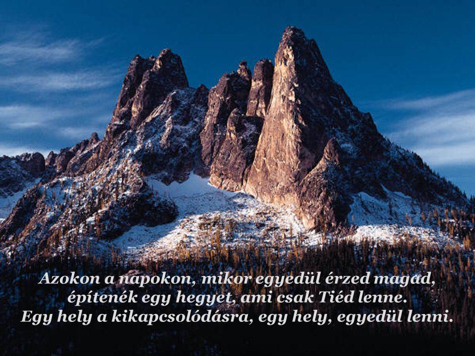 Azokon a napokon, mikor egyedül érzed magad, építenék egy hegyet, ami csak Tiéd lenne.