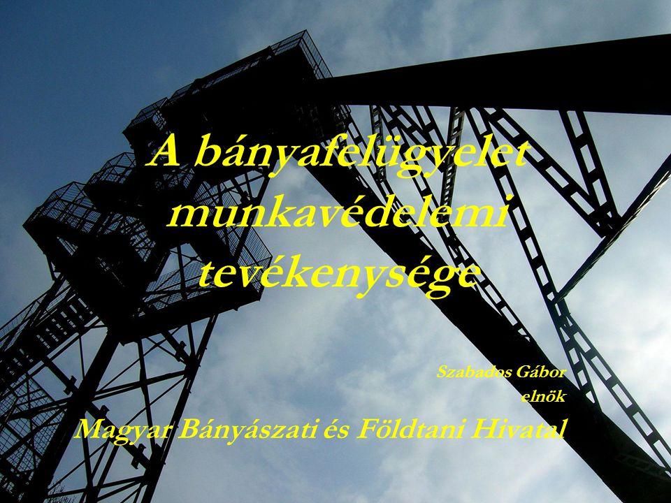 A bányafelügyelet munkavédelemi tevékenysége