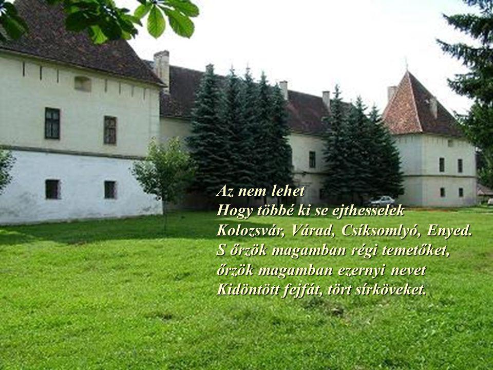 Az nem lehet Hogy többé ki se ejthesselek Kolozsvár, Várad, Csíksomlyó, Enyed. S őrzök magamban régi temetőket,