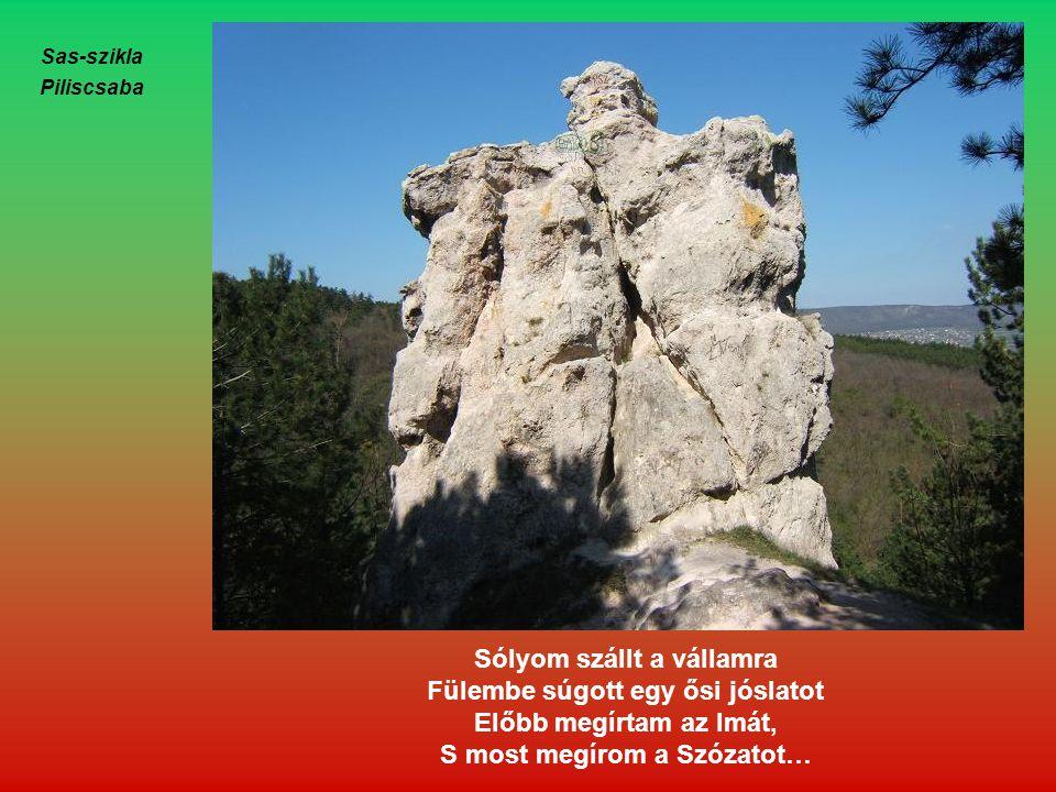 Sólyom szállt a vállamra Fülembe súgott egy ősi jóslatot
