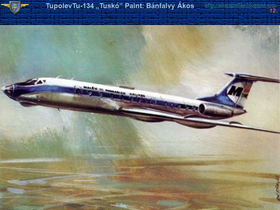 """TupolevTu-134 """"Tuskó Paint: Bánfalvy Ákos"""