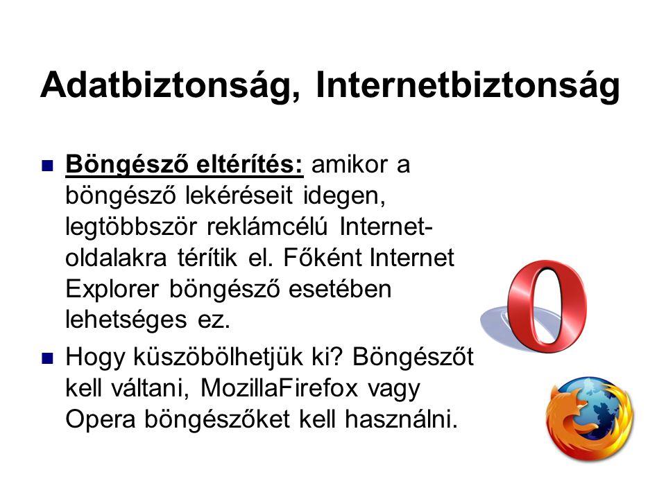 Adatbiztonság, Internetbiztonság