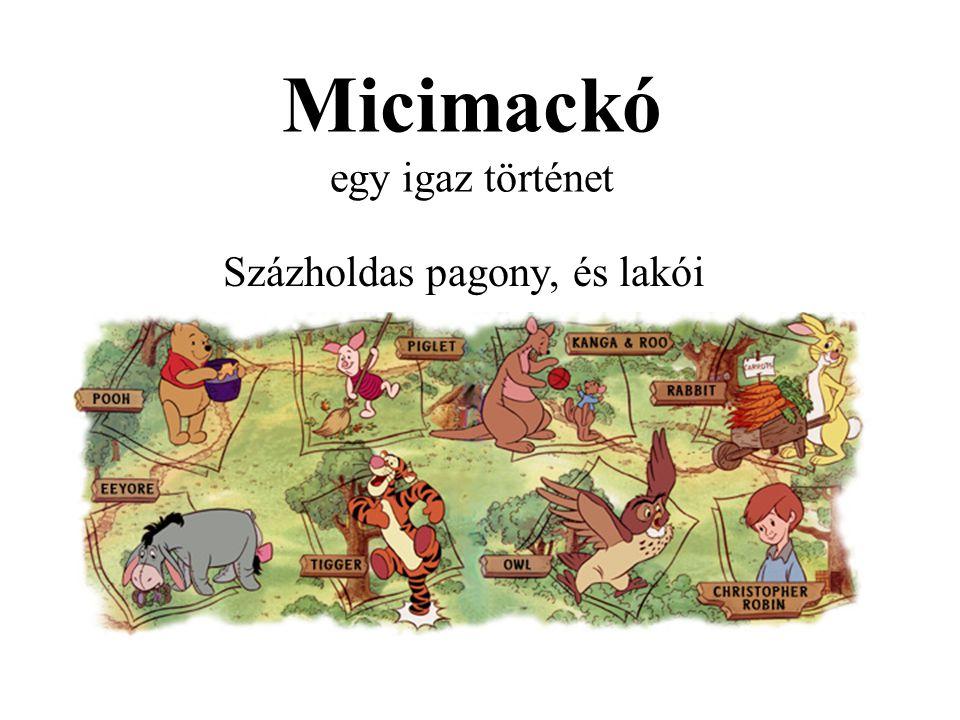 Micimackó egy igaz történet
