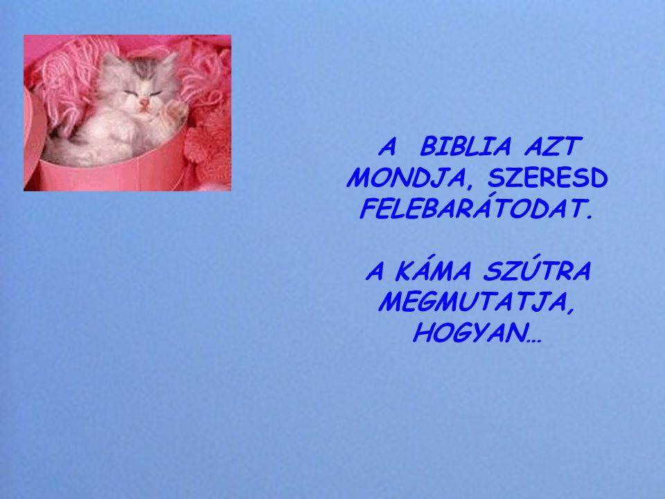 A BIBLIA AZT MONDJA, SZERESD FELEBARÁTODAT
