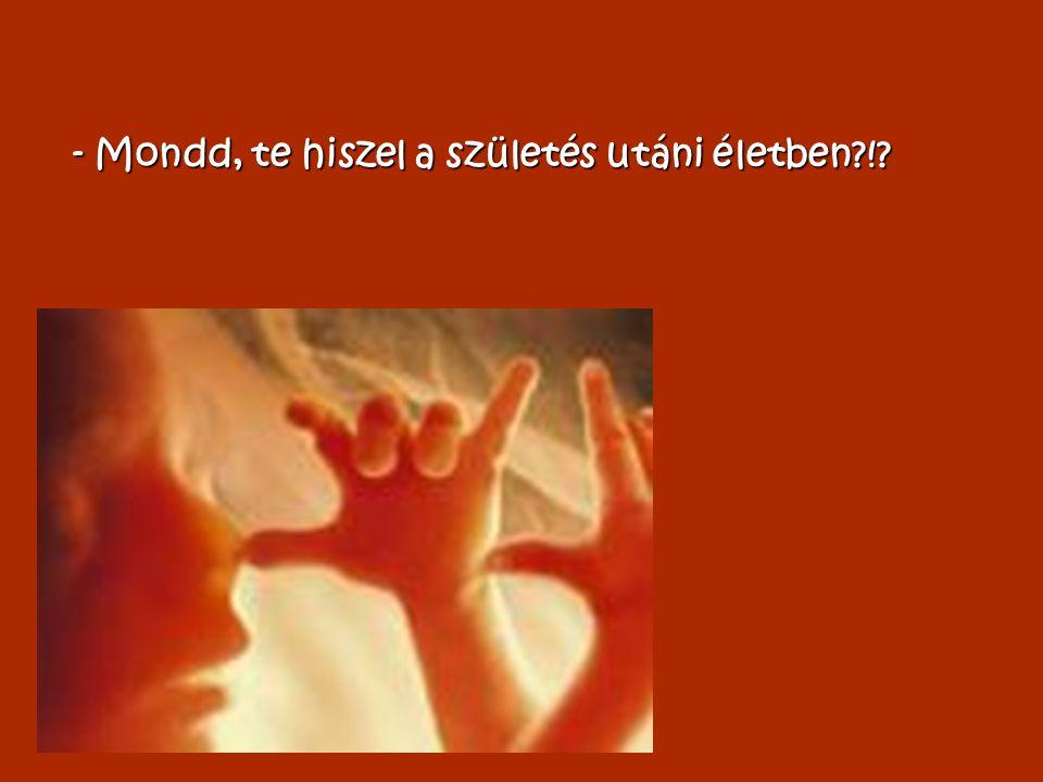 - Mondd, te hiszel a születés utáni életben !