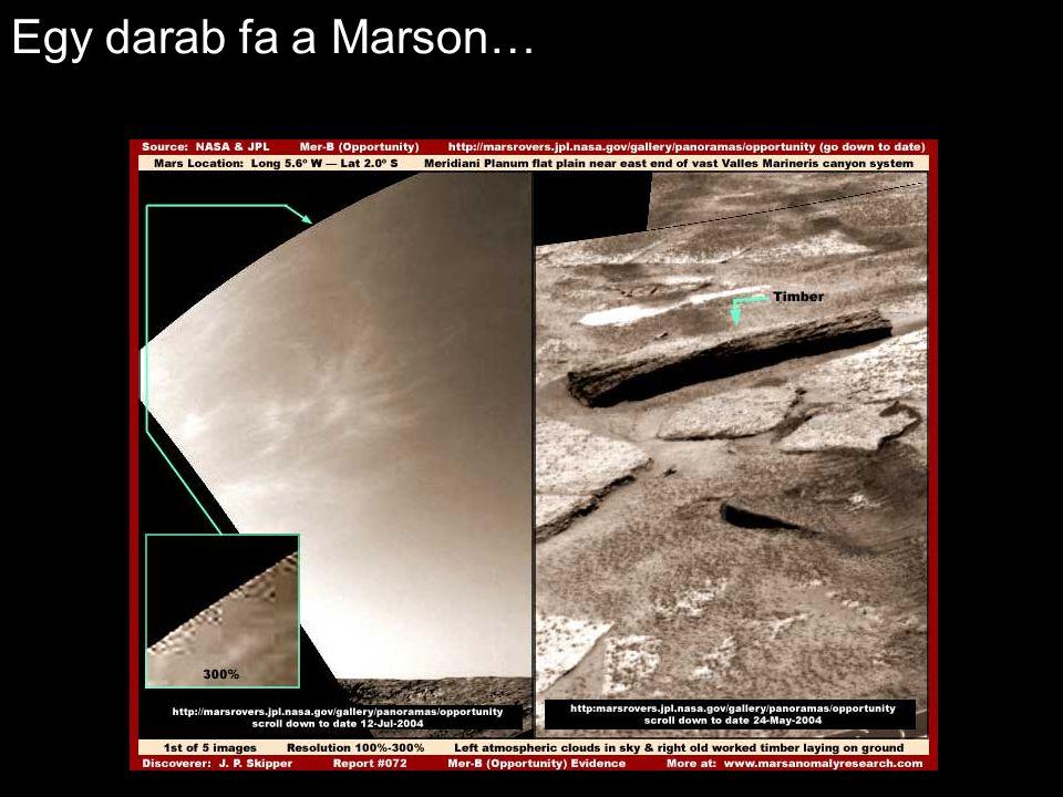 Egy darab fa a Marson…