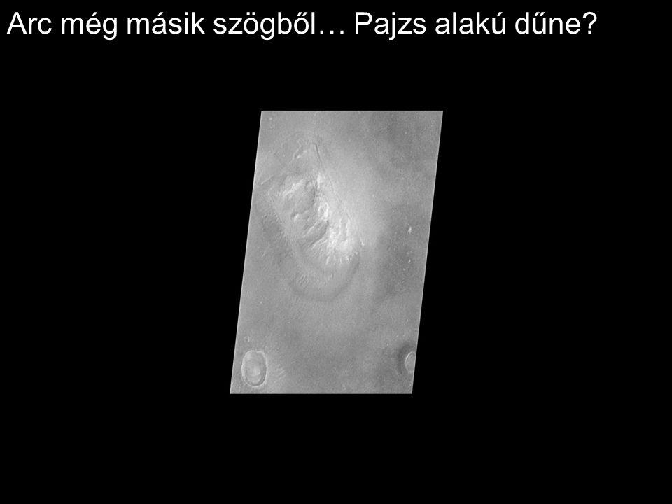Arc még másik szögből… Pajzs alakú dűne